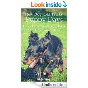 New Dog Old Tricks Puppy Training Dog Training And Self Help Lessons From Otis The Gordon Setter Guide To Puppy Training Dog Training Dog Care Puppy Care Self Help And Self Improvement. Kindle Edition